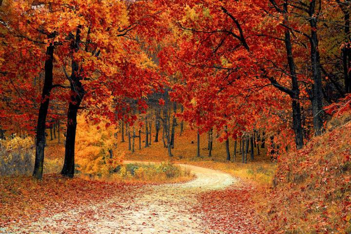 Oktoober Luunja vallas